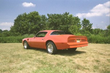 Rear View Of My 1976 Pontiac Trans Am